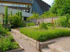 Vasa Museum's garden