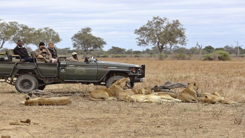 Awesome Game Drives